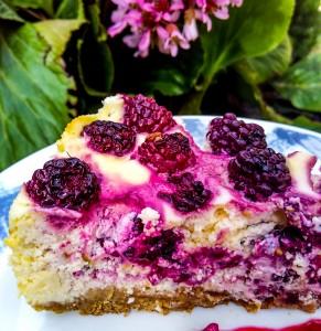 Cheesecake (1 von 1)-6